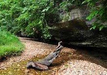 hobbs state park arkansas